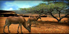 Afrika Screenshot from Shacknews