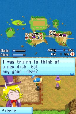 Harvest Moon DS: Sunshine Islands Chat