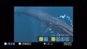 Endless Ocean: Blue World Screenshot from Shacknews