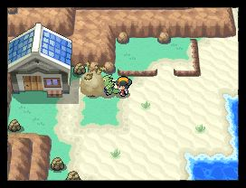 Pokemon SoulSilver Screenshots