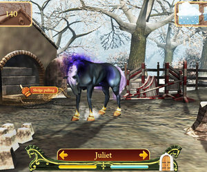 Secret of the Magic Crystals Screenshots