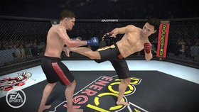 EA Sports MMA Screenshot from Shacknews