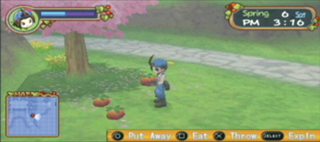 Harvest Moon: Hero of Leaf Valley Files