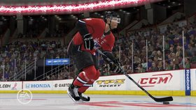 NHL 11 Screenshot from Shacknews