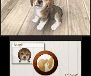 nintendogs + cats Screenshots