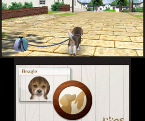 nintendogs + cats Files