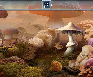 Mushroom Age Screenshots