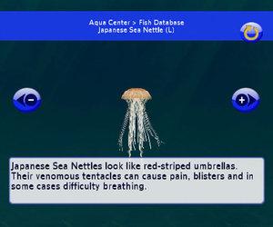 My Aquarium 2 Chat