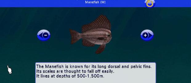 My Aquarium 2 News