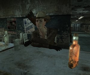 Fallout: New Vegas Files