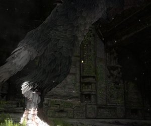 The Last Guardian Chat