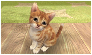 nintendogs + cats Screenshots