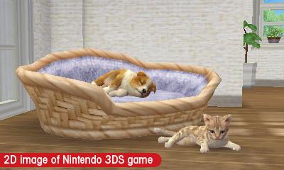 nintendogs + cats Files