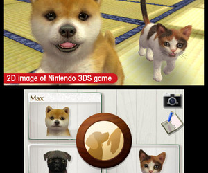 nintendogs + cats Chat