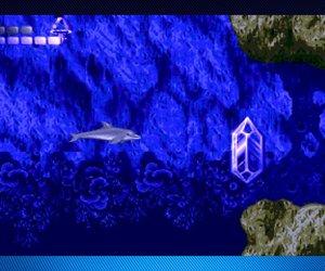 Ecco the Dolphin Files