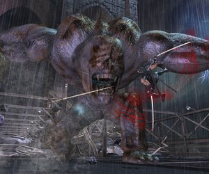 Ninja Gaiden 2 Screenshots