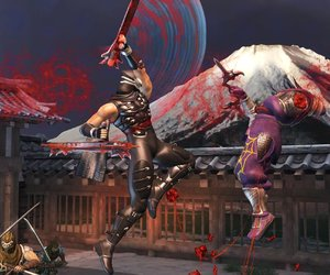 Ninja Gaiden 2 Files