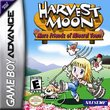 Harvest Moon: More Friends of Mineral Town boxshot