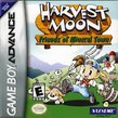 Harvest Moon: Friends of Mineral Town boxshot