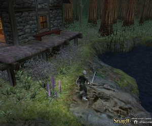 Dungeon Siege Screenshots