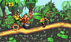 Donkey Kong Country Chat