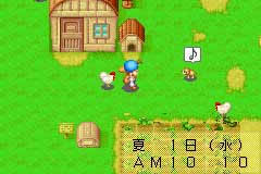 Harvest Moon: Friends of Mineral Town Files