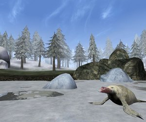 The Elder Scrolls III: Bloodmoon Screenshots