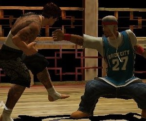 Def Jam Fight For NY: The Takeover Files