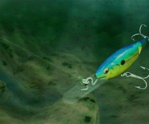 Rapala Tournament Fishing Files