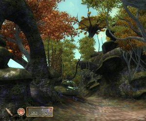 The Elder Scrolls IV: The Shivering Isles Files