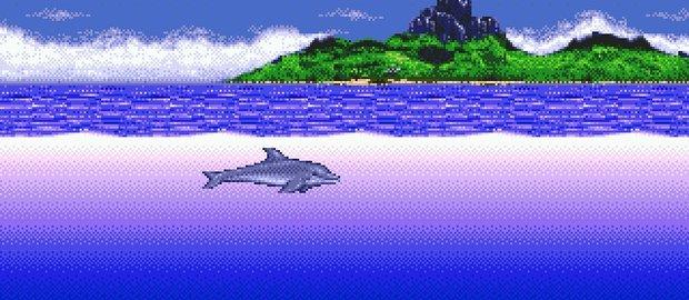 Ecco the Dolphin News