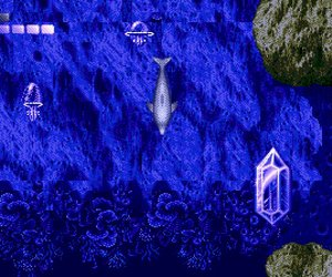 Ecco the Dolphin Videos