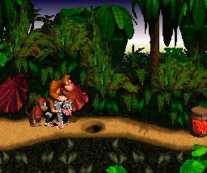 Donkey Kong Country Files