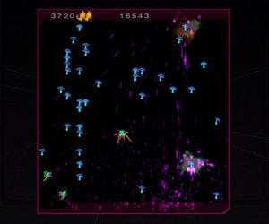Centipede & Millipede Screenshots