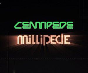 Centipede & Millipede Chat