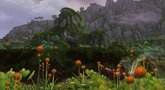 World of Warcraft: Mists of Pandaria Valley of the Four Winds zone preview