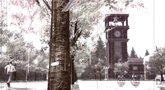 Deadly Premonition: The Director's Cut launch trailer