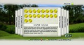 Tiger Woods PGA Tour 13: The Masters course mastery coins developer diary